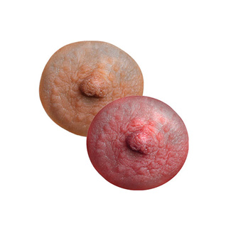 Natural silicone nipples